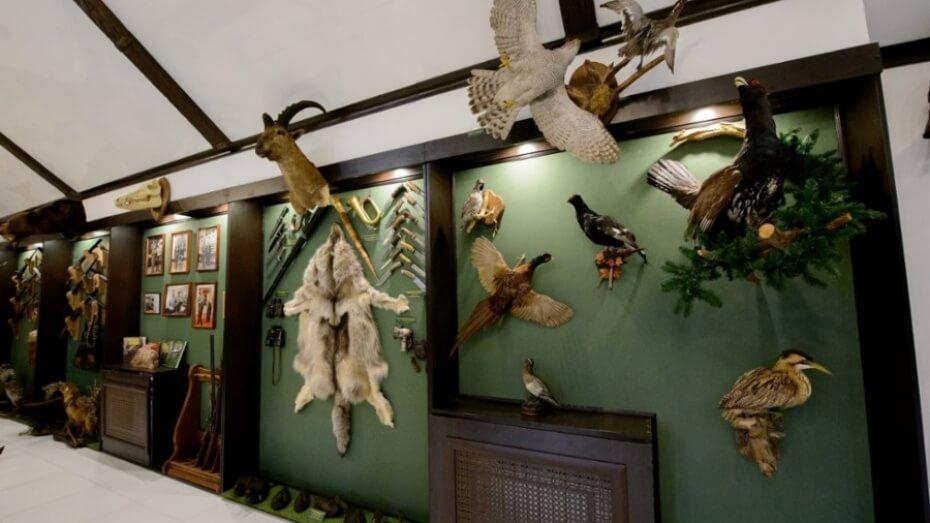 Музей охоты в Воронежской области