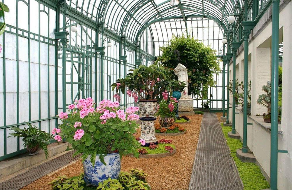 Оранжереи Бельгийской столицы открыты до 5 мая