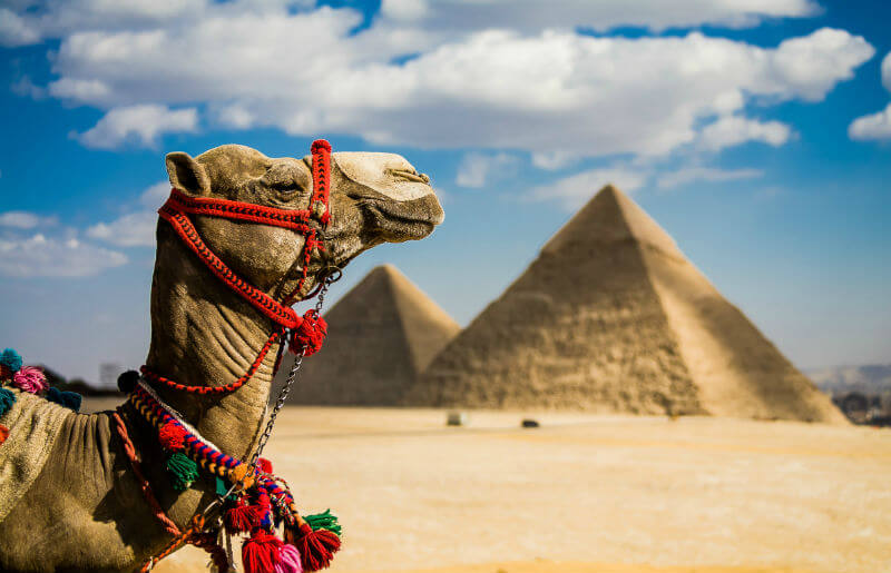Египет потерял интерес к российским туристам
