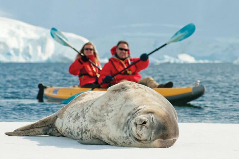 Отдых в Антарктиде по-русски или по-английски